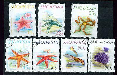 1966 Stachelhäuter Gestempelt, Hart Arbeitend Albanien 7066