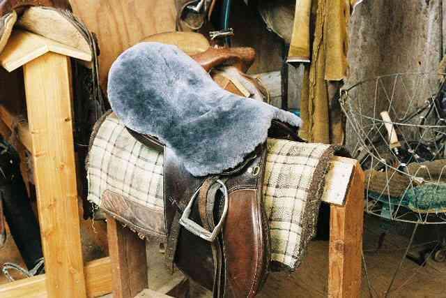 Silla Cubierta de asiento de piel de oveja carbón inglés propósito Doma Engel Tachuela del caballo