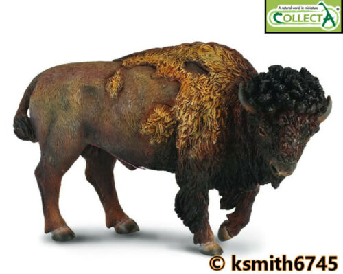 Collecta American Bison solide Jouet en plastique Wild Zoo Animal Buffalo * nouveau