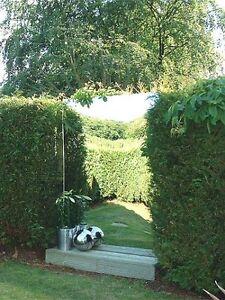 Miroir jardin acrylique plaque simple accessoire ext rieur panneau flexible ebay - Miroir exterieur jardin ...