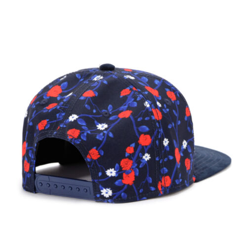 CAYLER /& SONS SNAPBACK CAP C/&S WL Paris Kush Brooklyn Trust Baseball Kappe Mütze