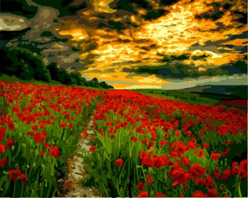 Poppies Tulip Field Landscape Paint By Number Kit DIY Number Canvas Painting Oil