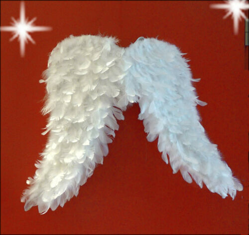 Engelsflügel aus Federn Engel Flügel Weihnachten weiß Shabby Chic groß 65x50cm