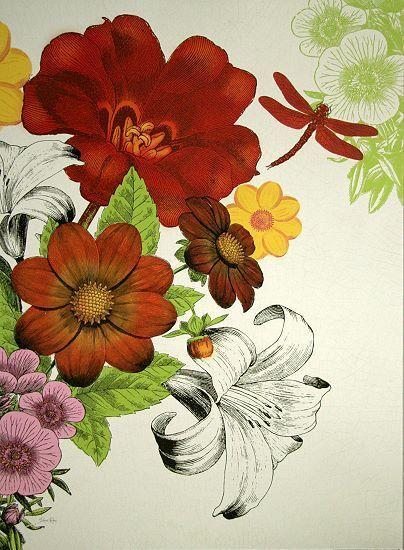 Devon Ross   Vibrant Bouquet Fleurs Tableau Prêt 50x70