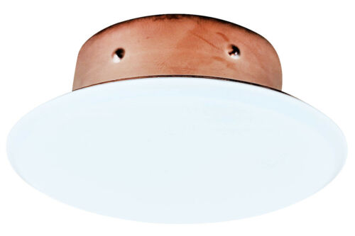 Victaulic White Cover Plate for Model V38 Fire Sprinklers
