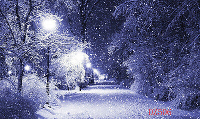 Vinyl Christmas Snow Forest Photography Backdrop Photo Background 7x5ft DZ506