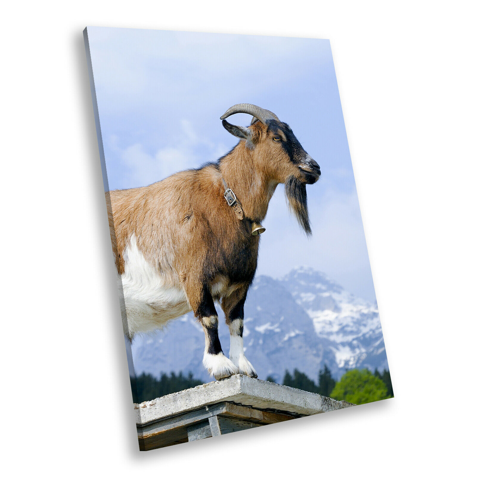 braun Grün Goat Landscape Portrait Animal Canvas Wall Art Picture Prints