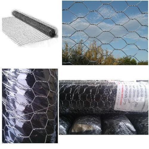 Fil galvanisé maille hexagonale clôture clôture de poulet 25 50mm 600 900 1200 mm