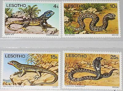 LESOTHO 1979 270-73y Reptiles Reptillien Fauna Nature Lizard Snake Schlange MNH