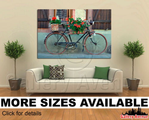 Old French Bike Bicycle and Flowers 3.2 Wall Art Canvas Picture Print