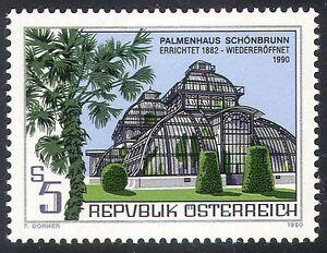 Austria-1990-Palm-Tree-Palms-Trees-Plants-Nature-Building-Architecture-1v-n32312