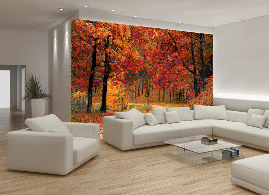 Autumn Tree Leaves Forest Photo Wallpaper Picture Mural