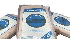 Wholesale Trial Pack Tempeh Starter Raprima Yeast Ragi Inokulum Protein Tempe Ebay