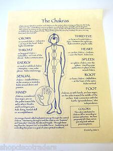 Chakras-Poster-8-5x11inch-Healing-Information-Sanskrit-Wheels-Energy-Medicine