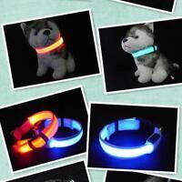 LED Light up Dog Pet Night Safe Bright Flashing Adjustable Nylon Collar Leas AUU