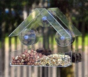 Plastique Transparent Fenêtre Mangeoire Ventouse Fit pour verre-Kingfisher-afficher le titre d`origine HzAYJHiv-07220505-477107441