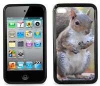 Squirrel For Ipod Touch 4th Generation
