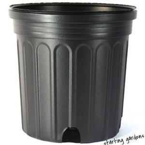 2 gallon nursery pot qty 50 black trade 2 gallon greenhouse containers ebay - Gallon bucket garden container ...