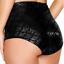 Lady Knicker Brief Fish Scale Metallic Shiny Holographic Slim Fit Panties Dance