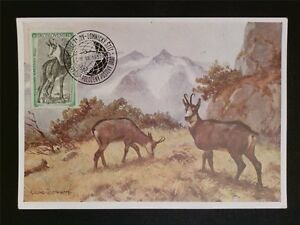 Cssr Mk 1957 Faune Chamois Niortais Chamois Maximum Carte Carte Maximum Card Mc C7887-afficher Le Titre D'origine