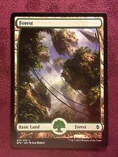 Battle for Zendikar Full Art Land  Forest #271  VO  -  MTG Magic (Mint/NM)
