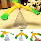 Magic Balancing Bird Science Desk Toy w/ Base Novelty Eagle Fun Learn Gag Gift