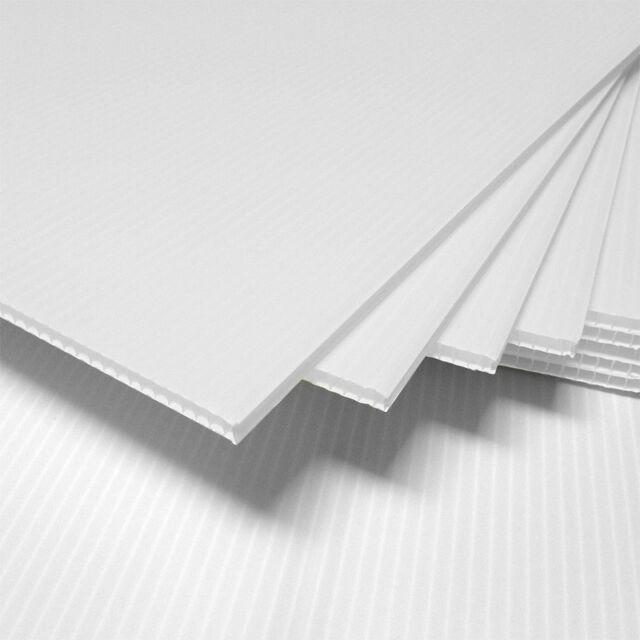 25 pcs Corrugated Plastic 18x24 4mm White Blank Sign Sheets Coroplast Intepro