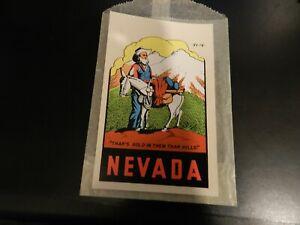 Vintage-Nevada-Water-Slide-Travel-Decal