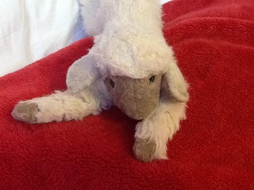 COLLECTABLE VINTGE VINTGE VINTGE 11  STEIFF SHEEP 5b1403