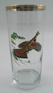 Ned-Smith-Ruffed-Grouse-Partridge-16-oz-Highball-Glass-6-25-034-Good-Condition