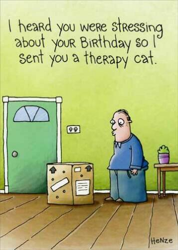 Therapy Cat Funny Birthday Card Greeting Card by Oatmeal Studios