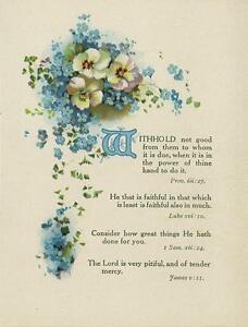 ANTIQUE PANSIES FORGET ME NOTS FLOWERS BIBLICAL VERSES POETRY COLOR CHROMO PRINT