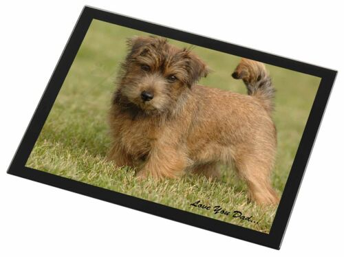 NorwichNorfolk Terrier 'Love You Dad' Black Rim Glass Placemat Animal, DAD80GP