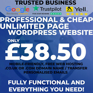 UNLIMITED-PAGE-WORDPRESS-WEBSITE-DESIGN-Domain-Hosting-and-Unlimited-Emails