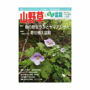bonsai-Book-Yamano-grass-and-mini-bonsai-2015-05-May-issue-magazine