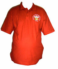 ENGLAND GRAND SLAM TRIPLE CROWN WINNERS 2016 RUGBY STYLE SHIRT NEW ALL SIZES !!