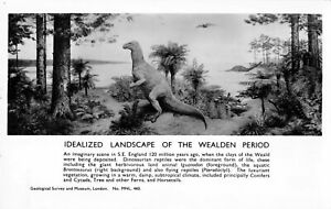 R176909-Idealized-Landscape-of-the-Wealden-Period-Geological-Survey-and-Museum