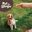 Pet-n-Shape-Beef-Lung-Dog-Treats-Made-and-Sourced-in-the-USA-All-Natural-Healthy thumbnail 4