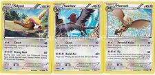 Pokemon Falkner Complete Deck - Noctowl - Pidgeot - Swellow - NM - 60 Cards