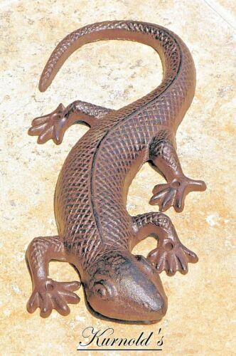 Lizard LEGUAN varan lucertola Salamander LURCH reptilie animale FERRO kurnolds 0238