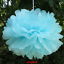 10pcs-Tissue-Paper-Pom-Poms-Flower-Ball-Wedding-Party-Birthday-Decor-6-034-8-034-10-034 thumbnail 15