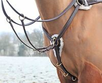 Salisbury 5 Point Breastplate Horse Equestrian Tack Riding
