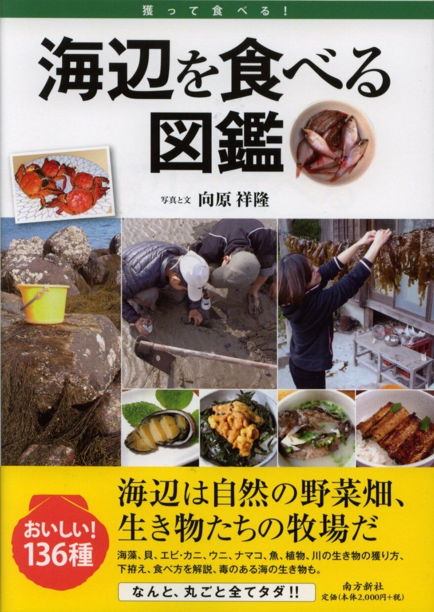 Eat the Seaside Illustrated Encyclopedia 'Catch and Eat' Book Japanese