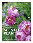The RHS Companion to Scented Plants by Stephen Lacey (Hardback, 2014)