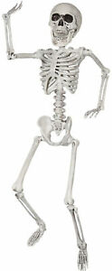 Posable-Skeleton-Prop-24-034-Halloween-Decor-Scary-Party-Human-Skull-Bones-Haunted