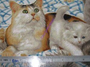 Choose-design-amp-size-cat-Cats-animals-cotton-quilting-fabric