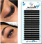 Pre-made-Russian-Lashes-Volume-Fans-3D-XD-Mink-Eyelash-Extensions-WINK-C-D-Curl thumbnail 4