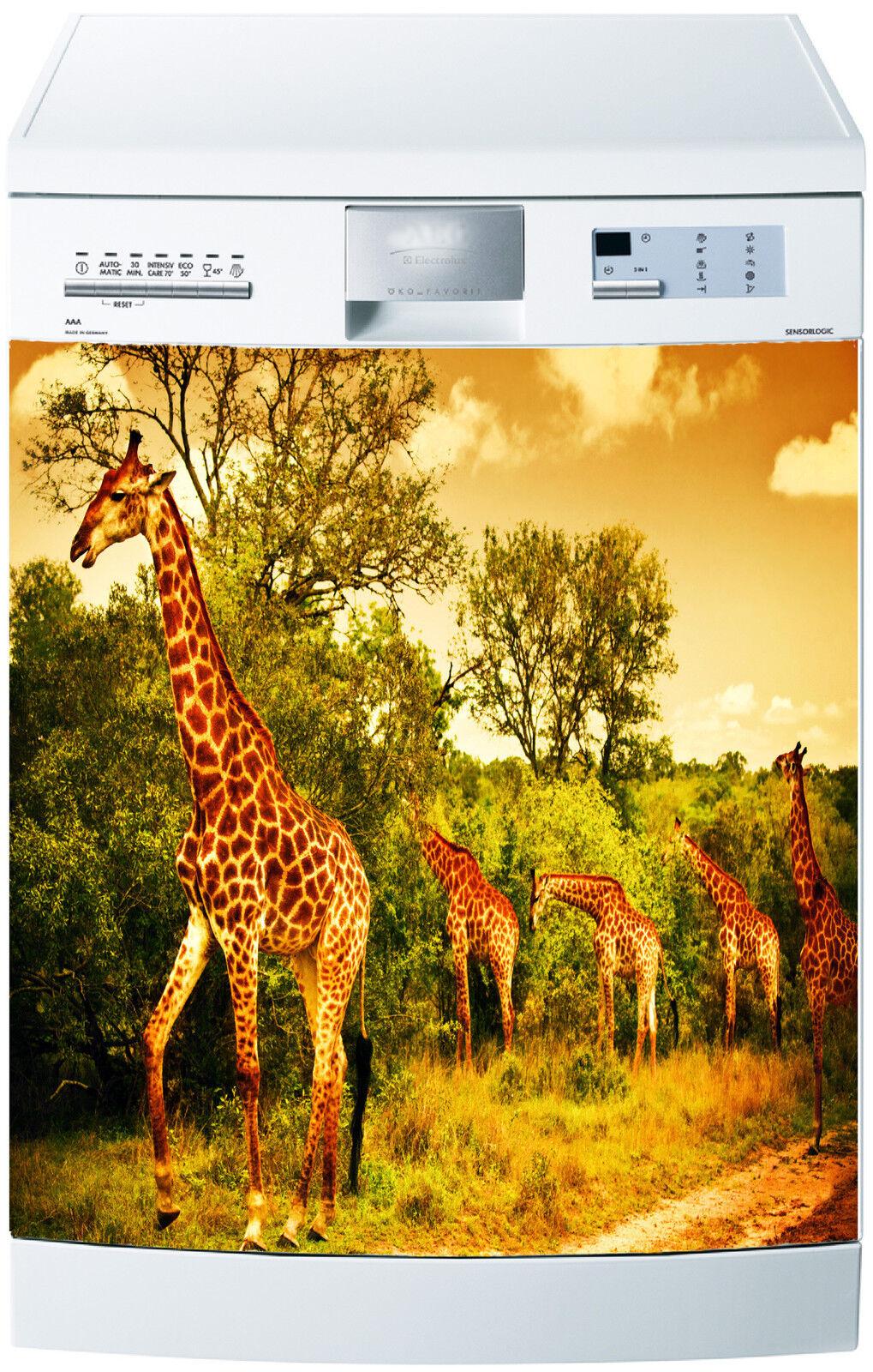 Adesivo lavastoviglie decocrazione cucina elettrodomestici Giraffa ref ref ref 647 6299a6