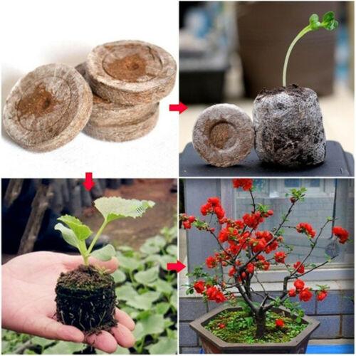 Nutritional Block Potted plant  Nursery Pot Soil Garden Supplie Compressed~~
