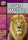 Rapid Stage 1 Set A: Big Cats Small Cats (Series 1) by Dee Reid (Paperback, 2006)